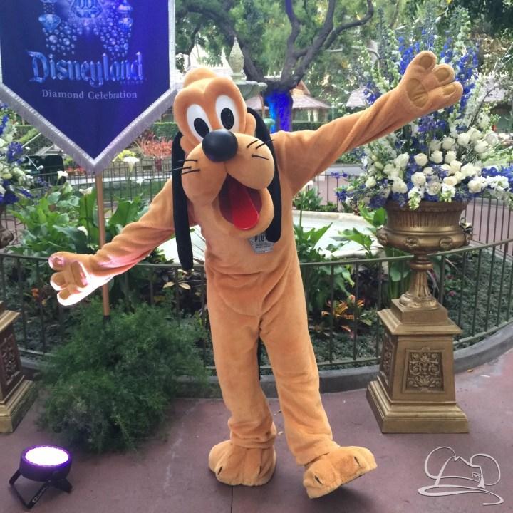 Mr. DAPs Covers Disneyland's Diamond Celebration-22