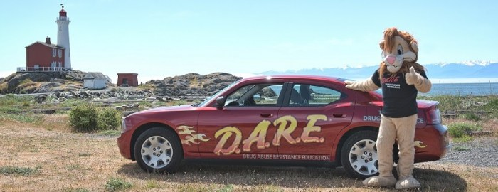 lion and dare car11