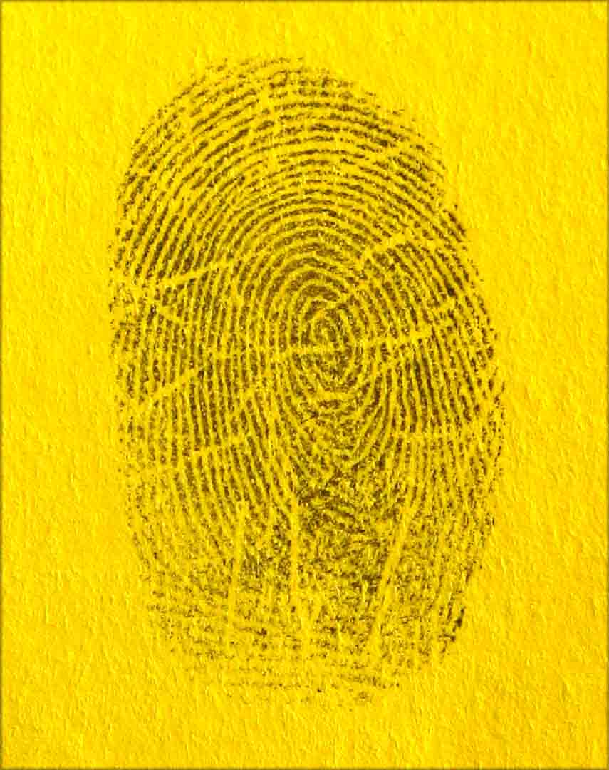 fingerprint patterns