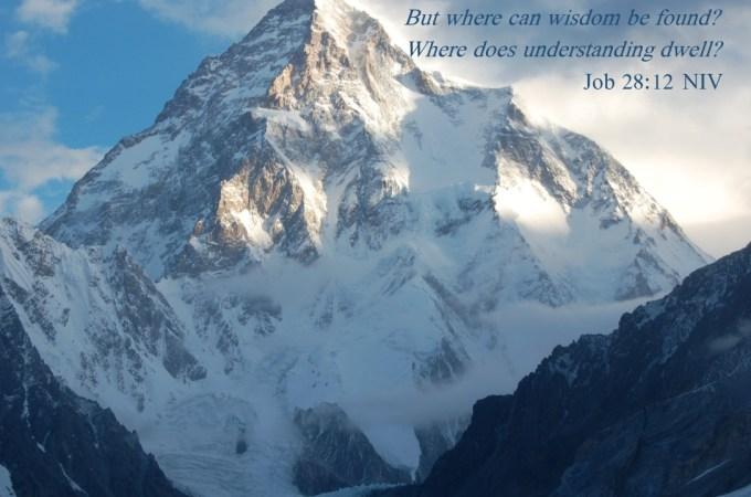 Wisdom quote MTN