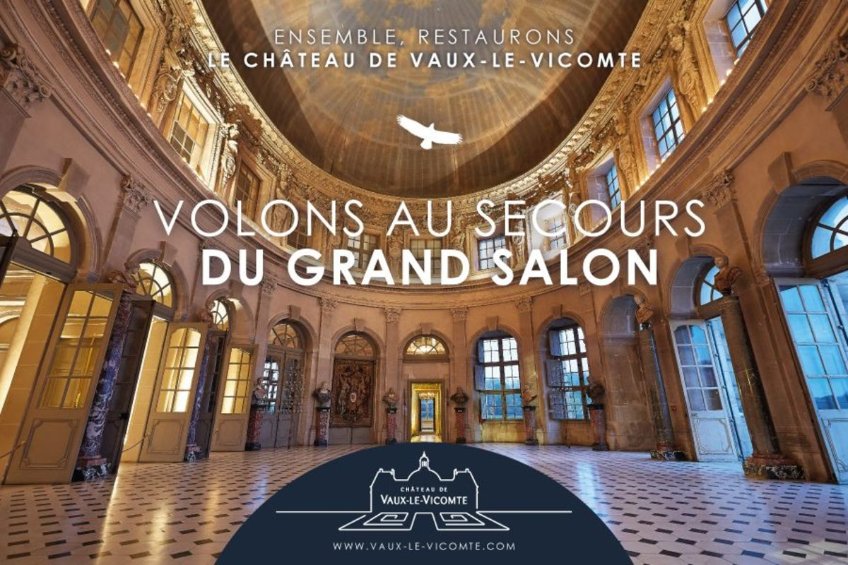 Grand Salon Dartagnans Volons Au Secours Du Grand Salon à Vaux Le Vicomte