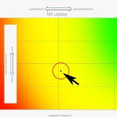 Der Laptop erzeugt Stress. Der Messpunkt springt in die Mitte. Quelle: Vortex HiFi