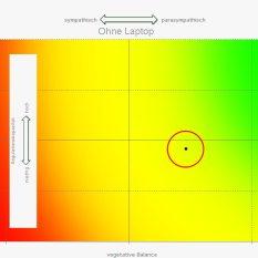 Der Messpunkt liegt ohne Laptop rechts im parasympathischen (entstresst) Bereich. Quelle: Vortex HiFi
