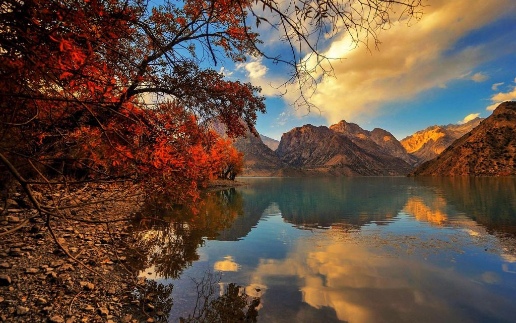 Microsoft Fall Wallpaper Autumn Tress On The Lake Side Hd Desktop Wallpaper