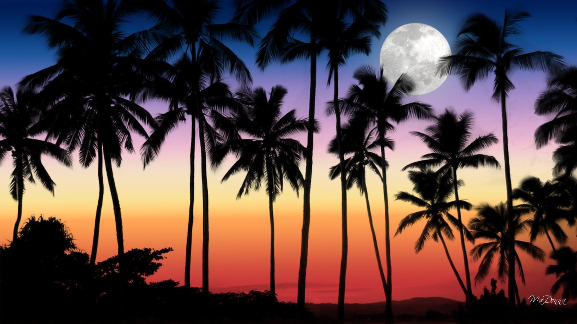 Frank Ocean Wallpaper Iphone X Lua Cheia Por Do Sol Tropical Hd Papel De Parede
