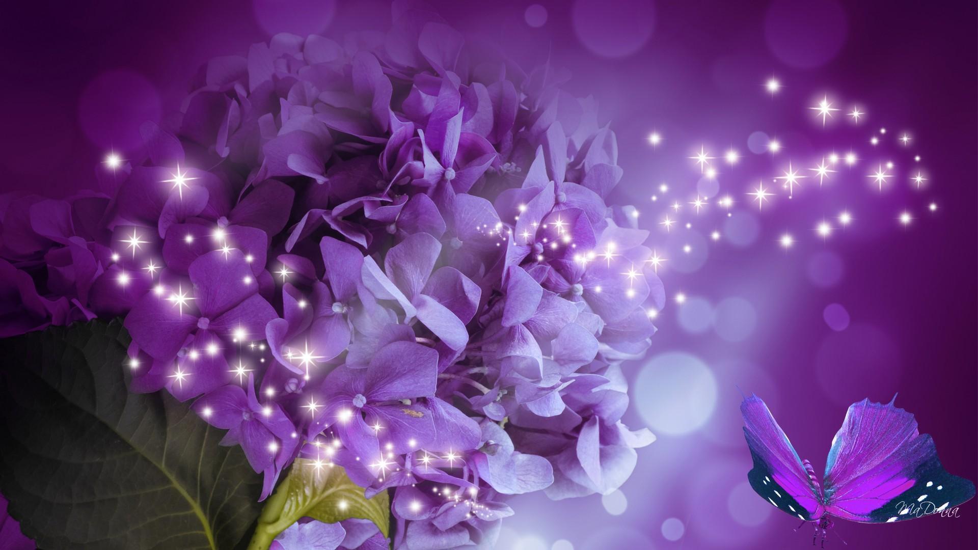 3d Rose Wallpaper Apps Hydrangea Sparkle Hd Desktop Wallpaper Widescreen High