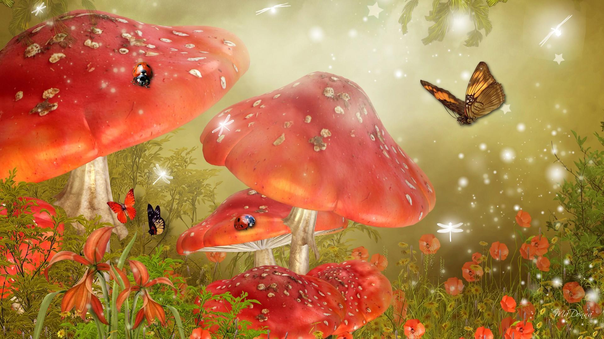 3d Mushroom Garden Hd Wallpaper Download Mystical Mushrooms Hd Desktop Wallpaper Widescreen
