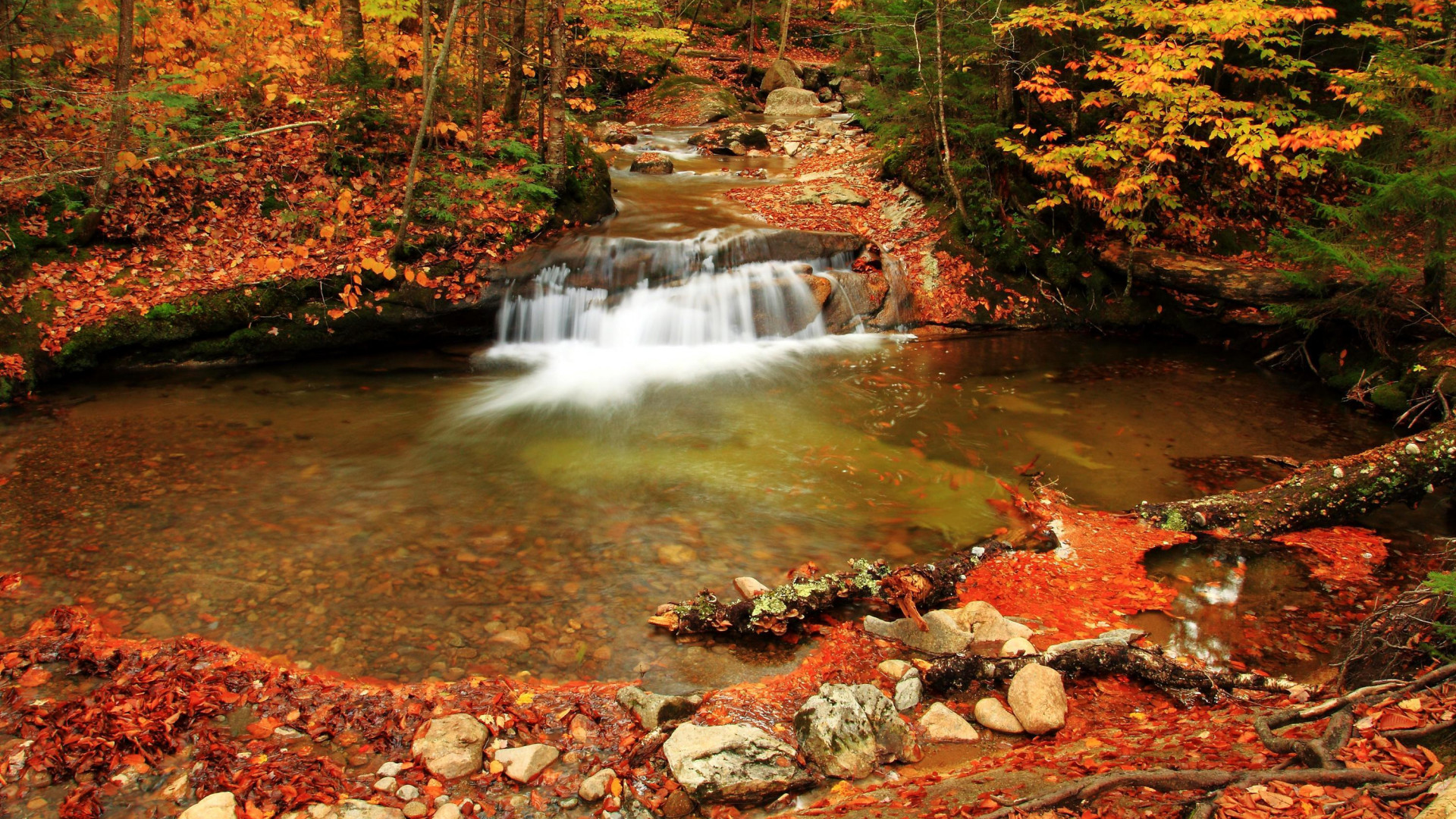 3d Moving Wallpapers For Pc Free Download Seasons Autumn Forests Waterfalls Foliage Nature Hd