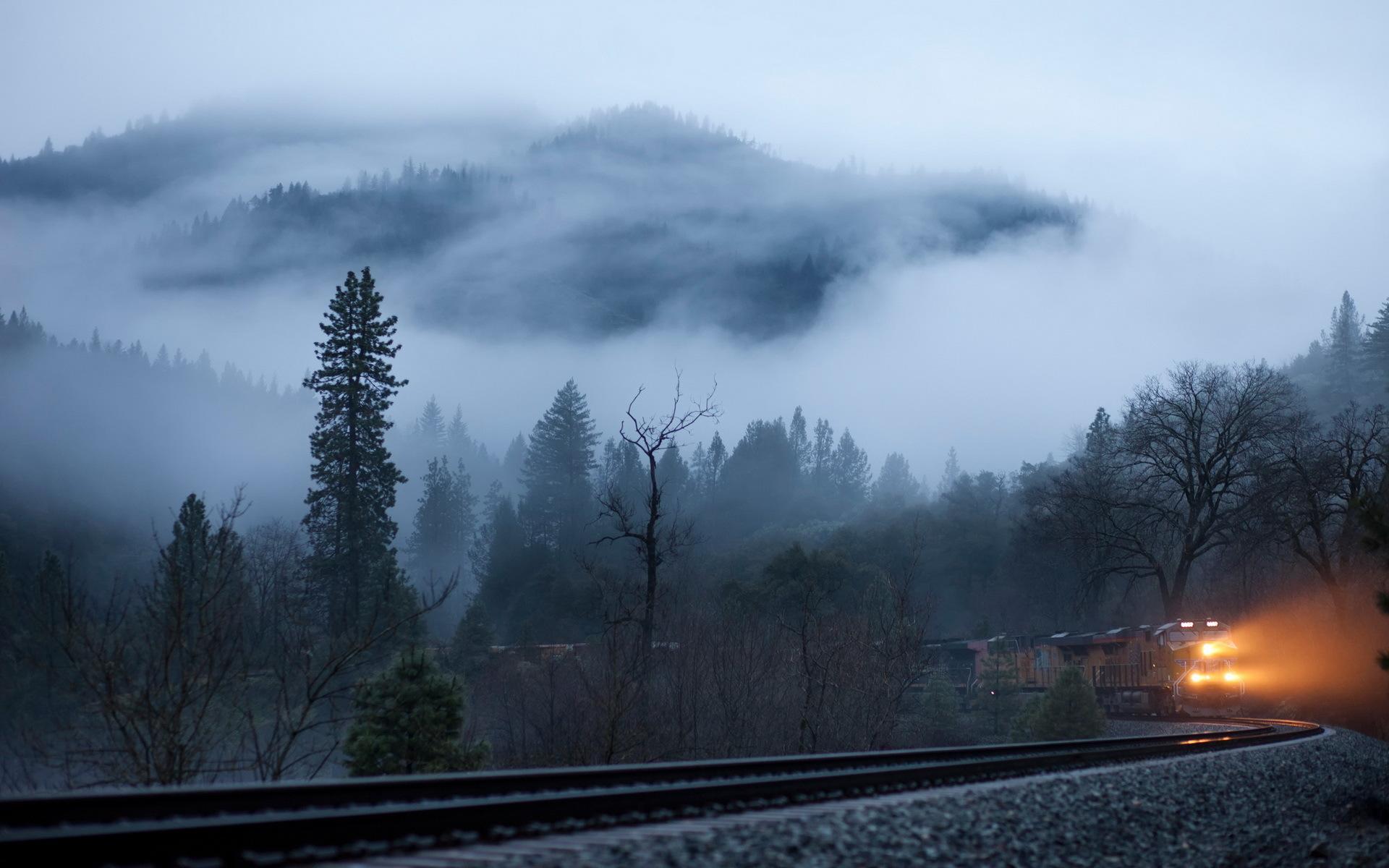 Oregon Football Wallpaper Hd Train Coming From The Foggy Forest Hd Desktop Wallpaper