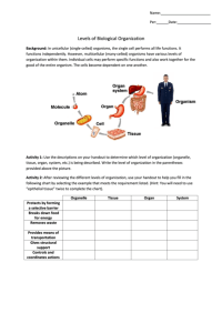 Levels Of Biological Organization Biology Worksheets ...