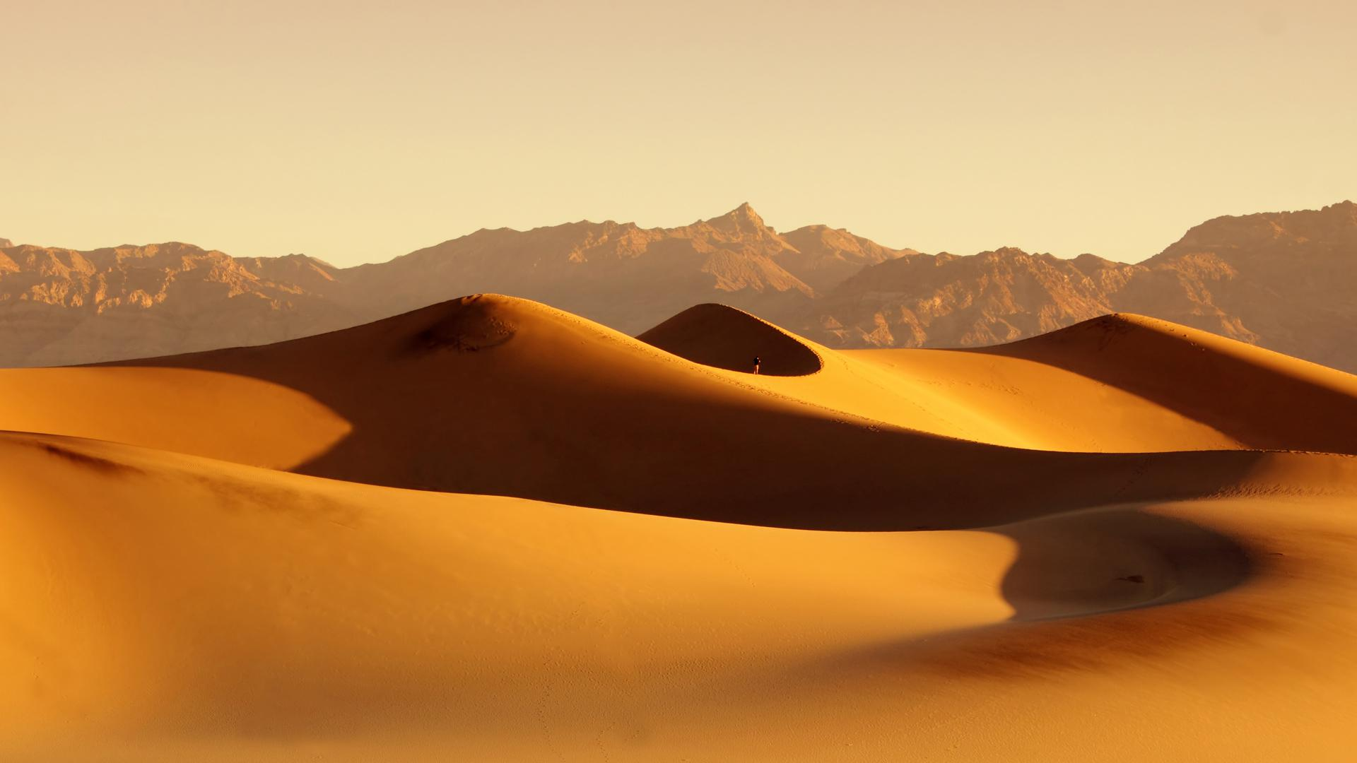 Animated Happy New Year D Hd Desert Hd 1080p Wallpaper Download Free 141238