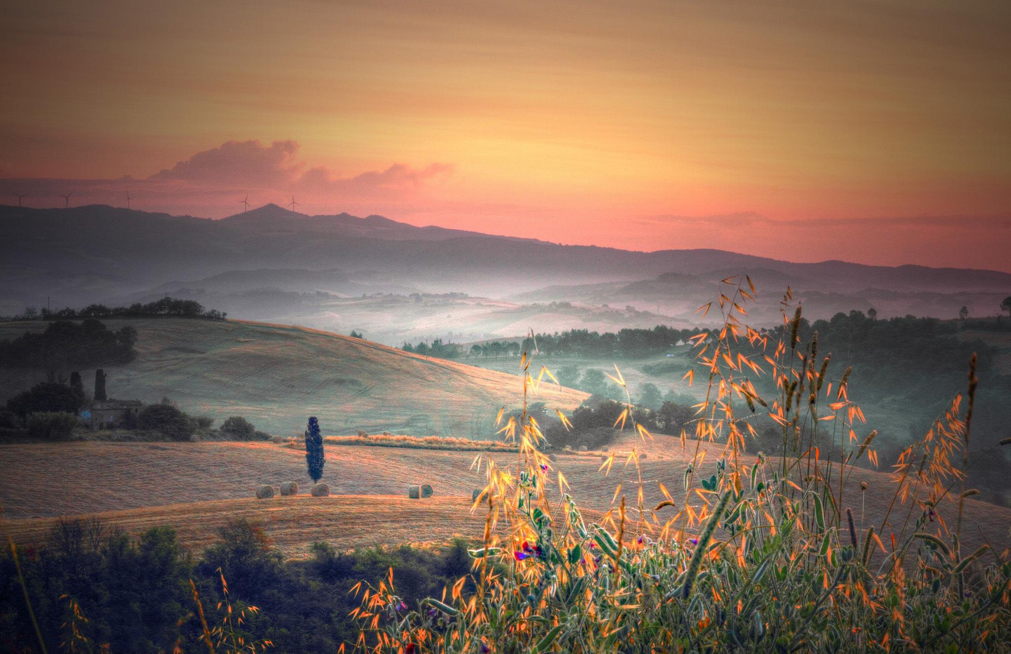Computer Desktop Hd Wallpapers Fall Hd Italy Tuscany Hills Trees Fields Plants Grass Morning