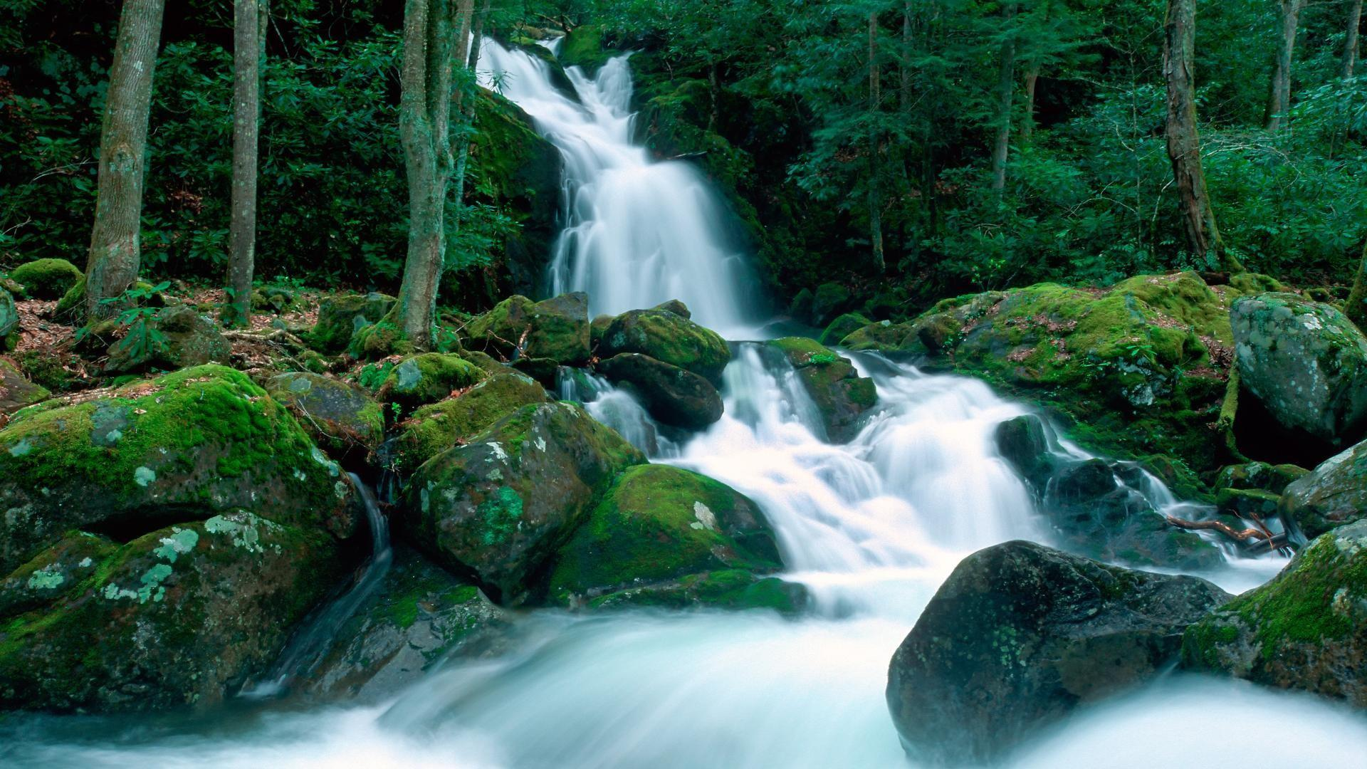 Background Wallpaper Hd Fall Fog Hd Landscapes Nature Falls Great Smoky Mountains Creek