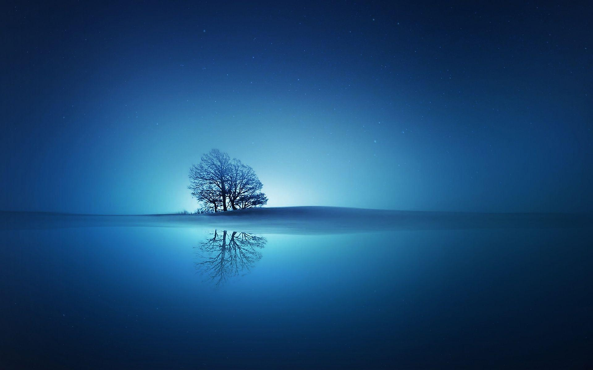 Good Morning Wallpaper Cute Hd Tree In The Blue Sunset Wallpaper Download Free 148983