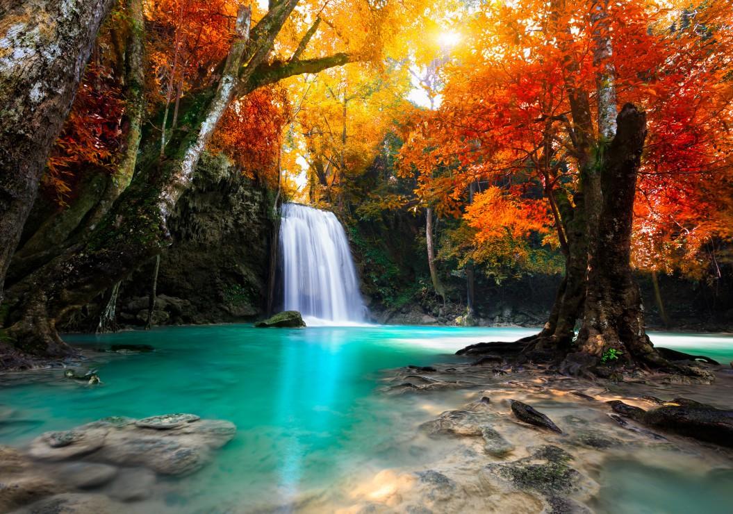 Fall Foliage Wallpaper Screensavers Puzzle Deep Forest Waterfall Grafika 01141 1000 Pieces