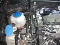 Keilrippenriemen wechsel....wie gehts : VW Passat B6 & CC