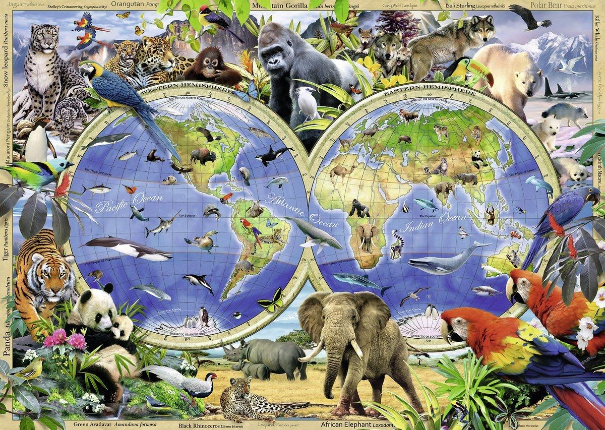 Kids Animal Wallpaper Puzzle Carte Du Monde Des Animaux Ravensburger 19385 1000