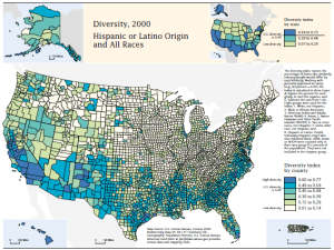 diversity in the US