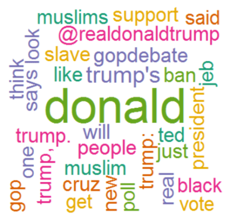 wordcloud_donald
