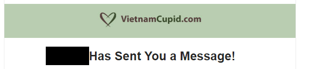 How To Meet Women On VietnamCupid