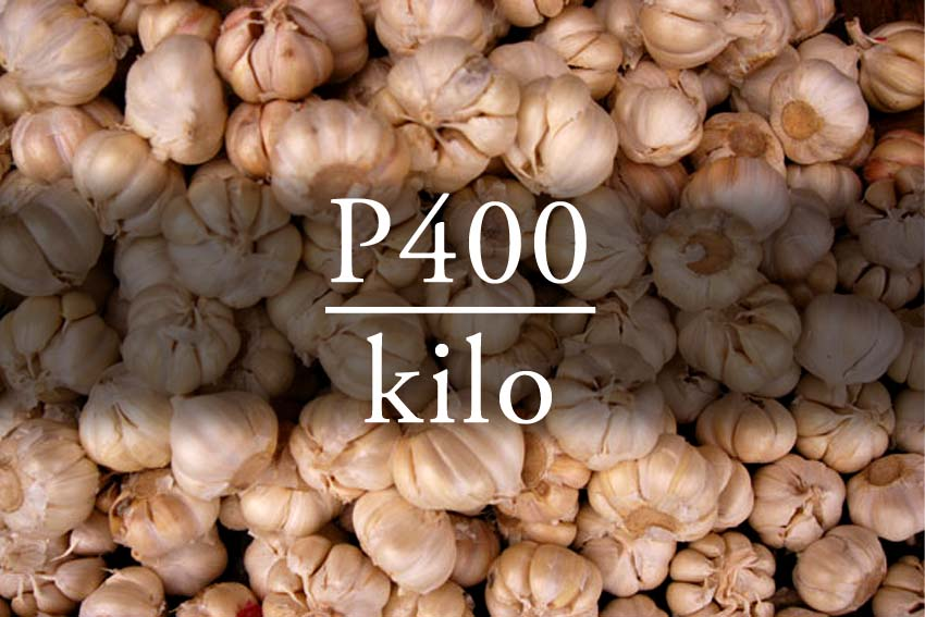 PUNGENT ECONOMY: GARLIC INDUSTRY AND THE LACK OF SUSTAINABILITY