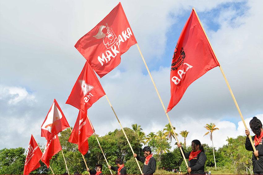 flags-1-medel