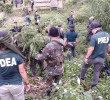 PDEA counsel says Davao unit is undermanned
