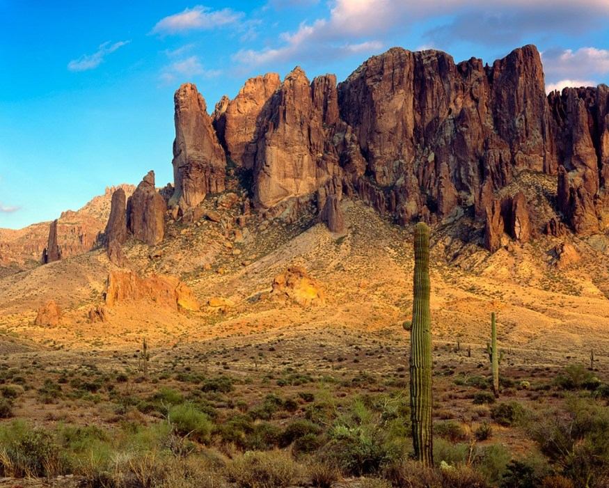 Apache Junction Homes For Sale Your Chandler Realtor