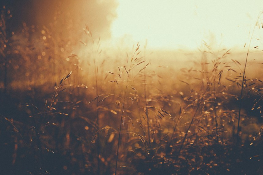 Autumn Morning Sunrise