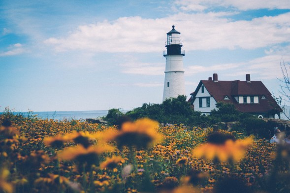 Flowers and The Lighthouse