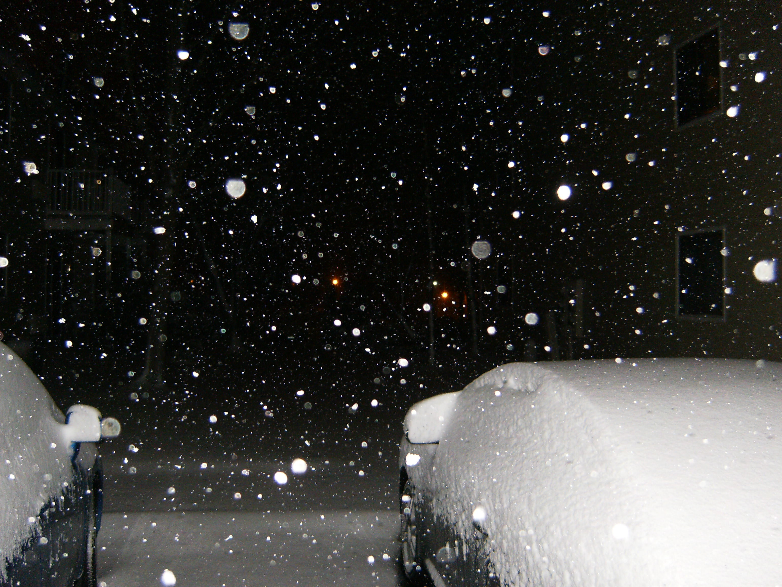 Snow Falling At Night Wallpaper Snowy Night 171 The Schleicher Spin