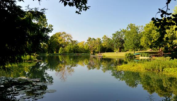 Practice-Pond2