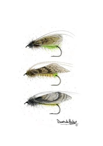 Flies-NoHackleCaddis