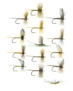 Traditional-Dry-Flies