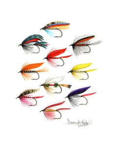 Trad Wet Flies -Attractors