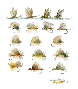 FlaredHairWing-Dry-Flies-