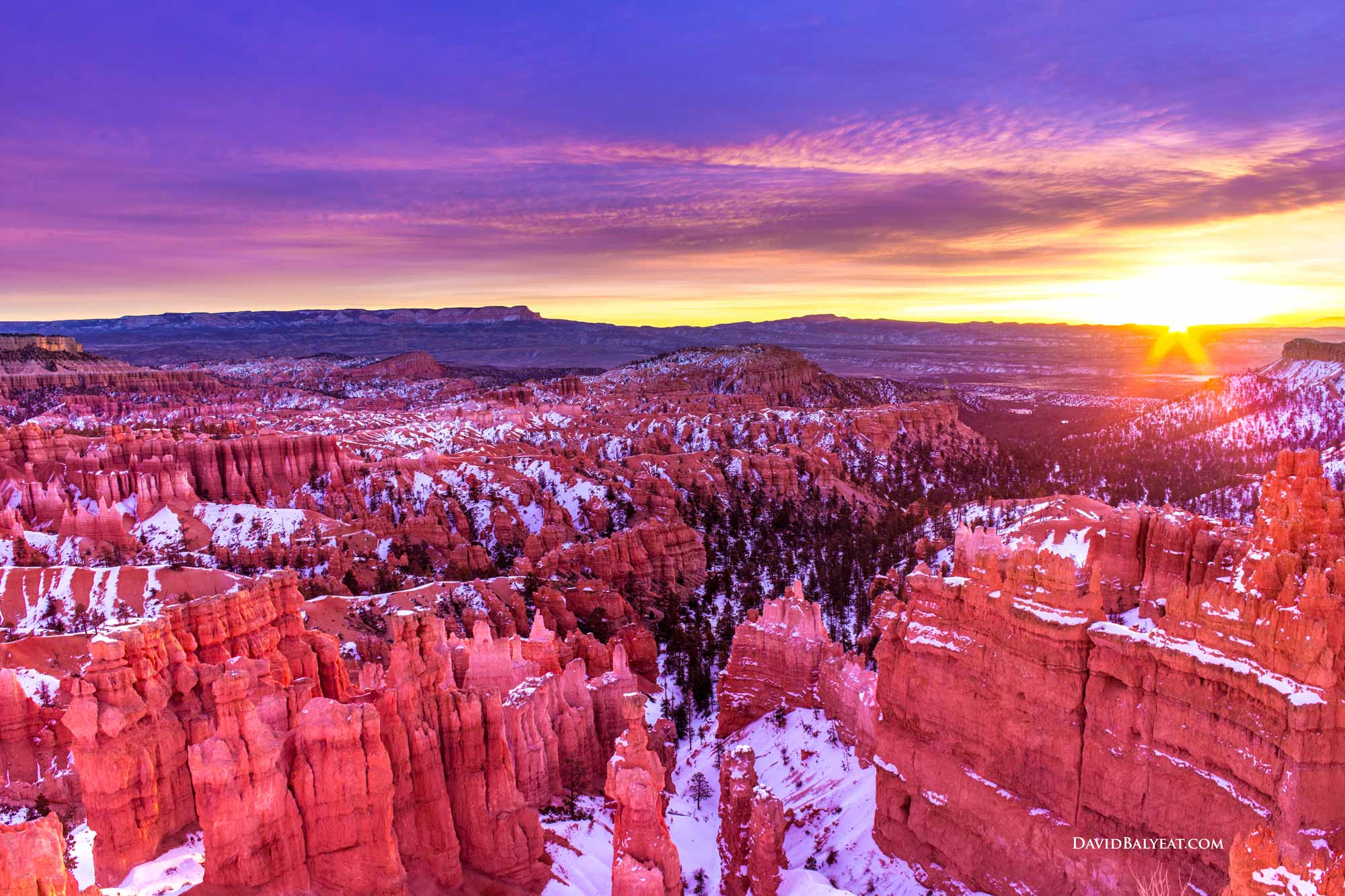 Rustic Fall Wallpaper Bryce Canyon Utah David Balyeat Photography