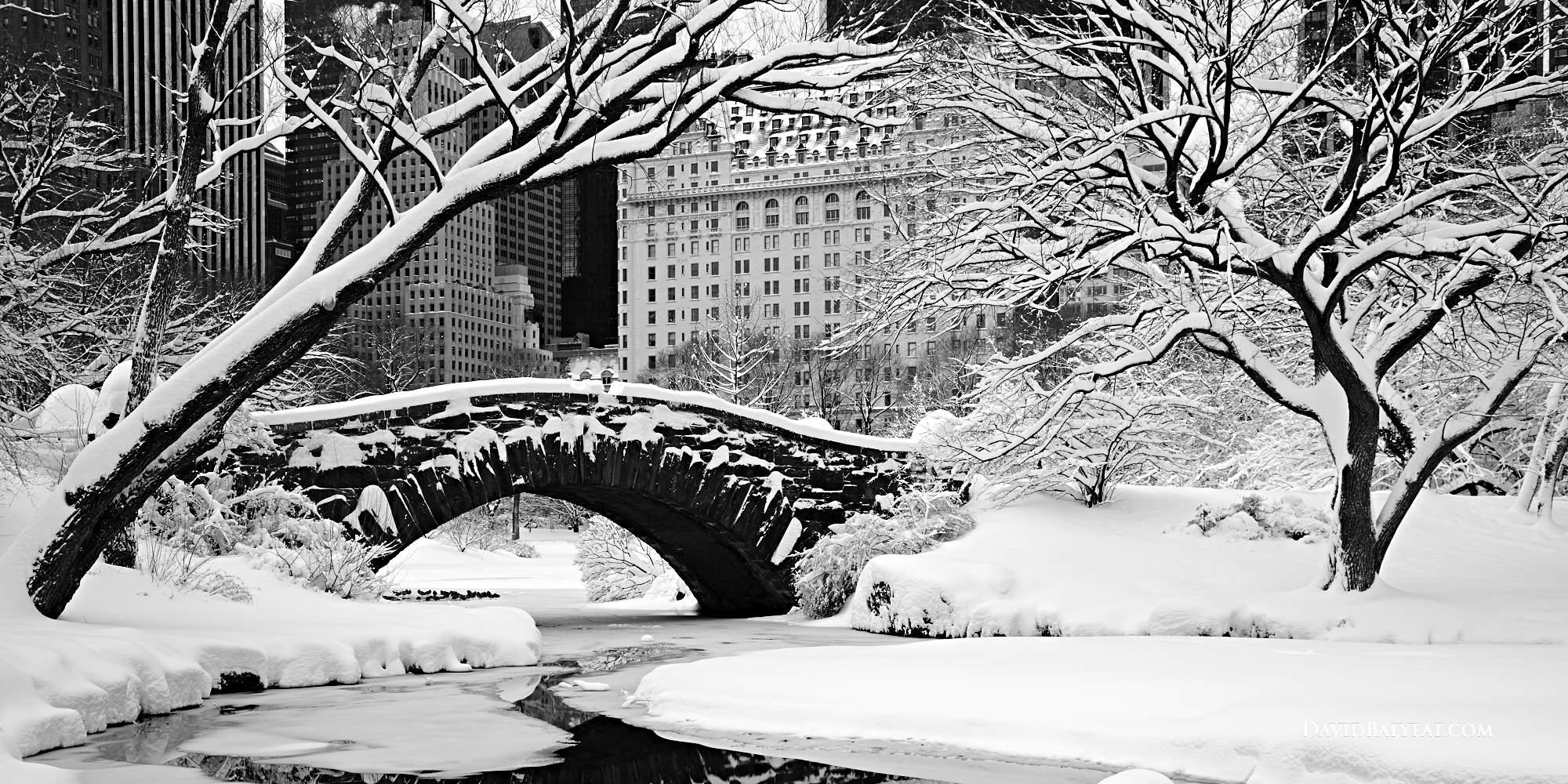 Seattle Washington Fall Skyline Wallpaper Winter Paradise Central Park David Balyeat Photography