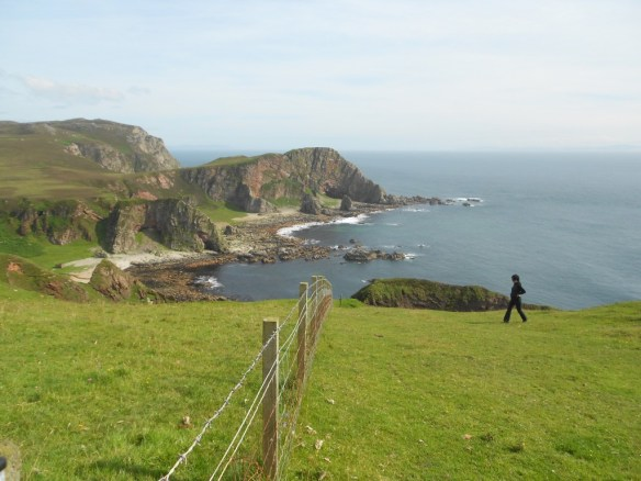 Fence at Mull of Oa