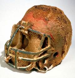 football-helmet-aganetha.jpg