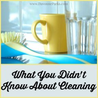 What You Didn't Know About Cleaning