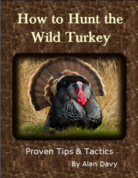 How to Hunt the Wild Turkey Ebook