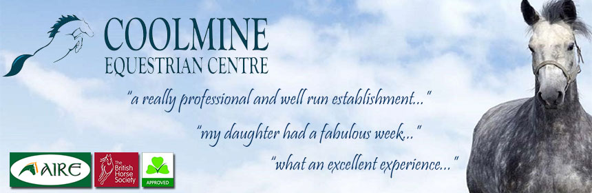 Coolmine Equestrian Centre - Horse Riding in Dublin
