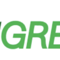 Healthy Lawns Have Curb Appeal with TruGreen