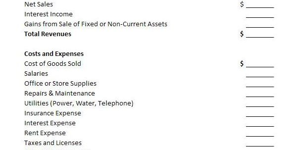 Financial Statements Templates For Nonprofit Organizations Financial