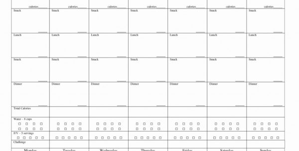 5 Year Financial Projection Template Sales Forecast Spreadsheet
