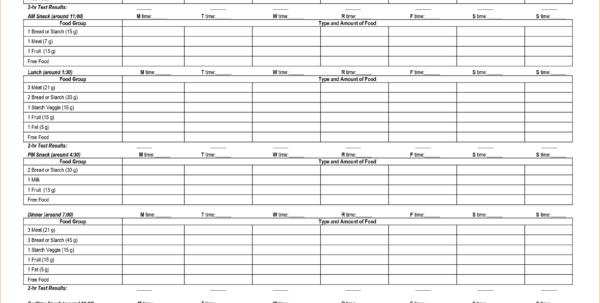 diabetic spreadsheet