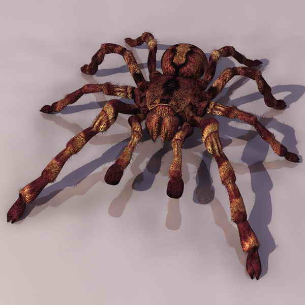 Großer Badezimmer Schrank Spider Tiere 9 3d Model Download,free 3d Models Download