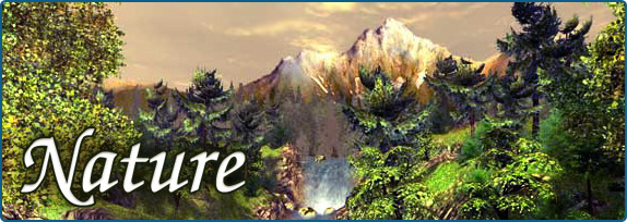 Autumn Fall Live Wallpaper Natur 3d Bildschirmschoner Nature 3d Natur Screensaver