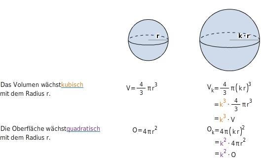 Volumen- und Oberflächenberechnung - bettermarks